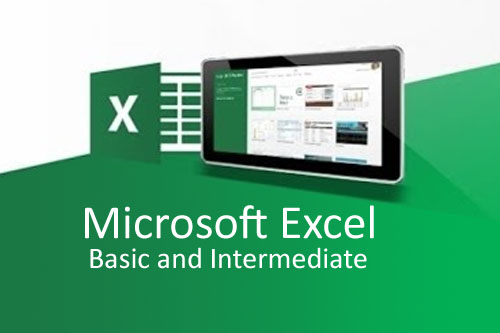 MS Excel (Basic and Intermediate)